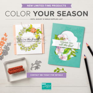 Color Your Season! This bundle covers Spring/Summer, Fall, and Christmas