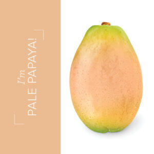 Pale Papaya an in color from the new catalog